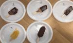 Fødevareekspert Michael René smagstester vegansk is