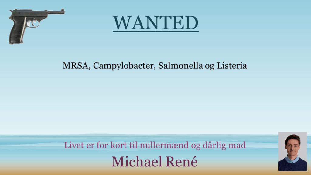 Wanted, 2. ed.
