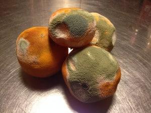 Rådne appelsiner